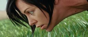 Varför är det ingen som klipper det vassa gräset?