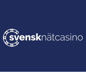 svensknätcasino.com